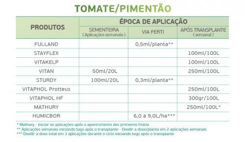 Tomate 2