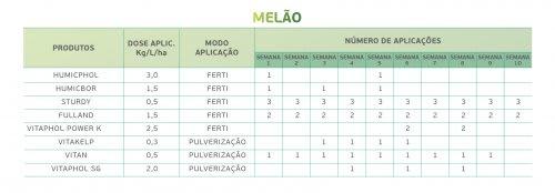 Melão 3
