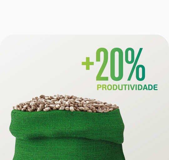 Entenda como o Humicbor pode ajudar a produzir além da conta.