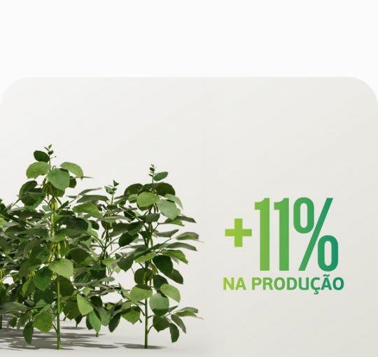 Soluções Satis auxilia as plantas a enfrentar condições adversas.