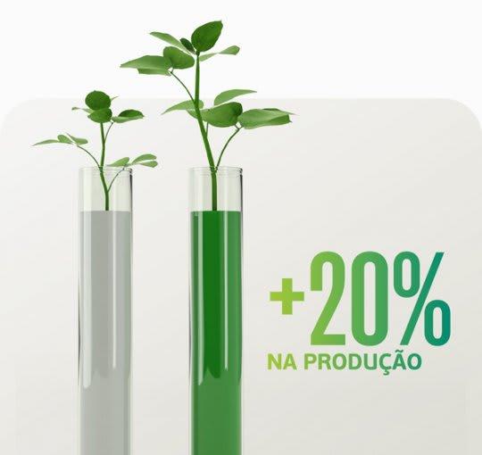 Auxílio no manejo de ferrugem resulta em 20% a mais na produtividade da soja.